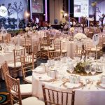 Tiffany Chairs for Party's & Functions